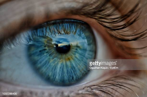 close-up of human eye - eyes stock pictures, royalty-free photos & images