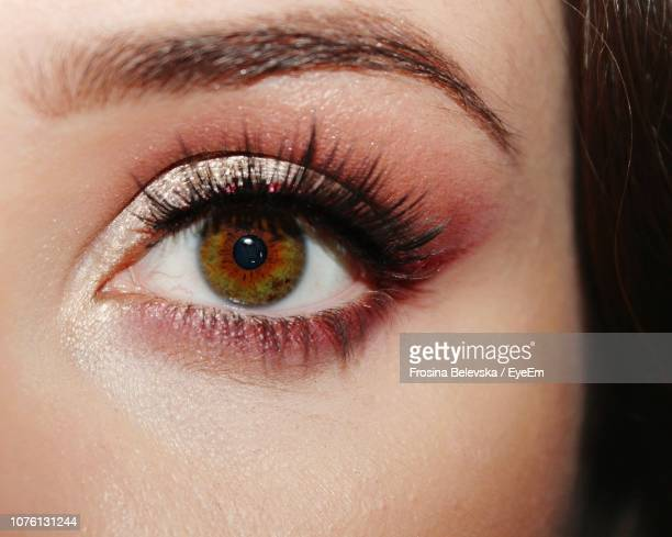 close-up of human eye - hazel eyes stock pictures, royalty-free photos & images