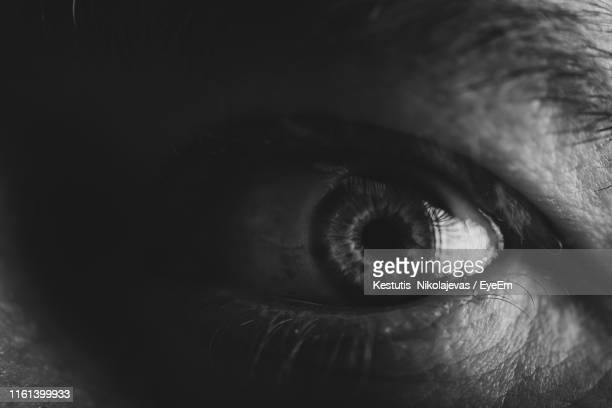 close-up of human eye - eyelid stock photos and pictures