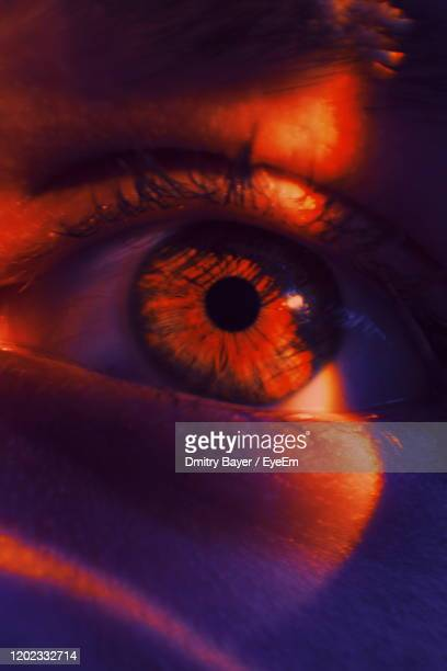 close-up of human eye - eye stock pictures, royalty-free photos & images