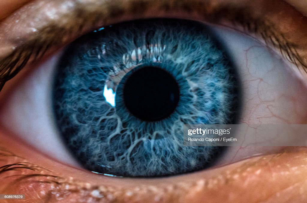Close-Up Of Human Eye : Stock Photo