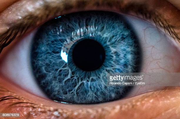 close-up of human eye - yeux bleus photos et images de collection