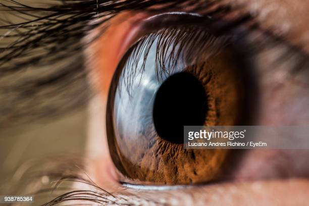 close-up of human eye - iris eye stock photos and pictures