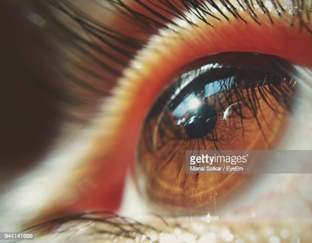 close-up of human eye - parte do corpo humano imagens e fotografias de stock