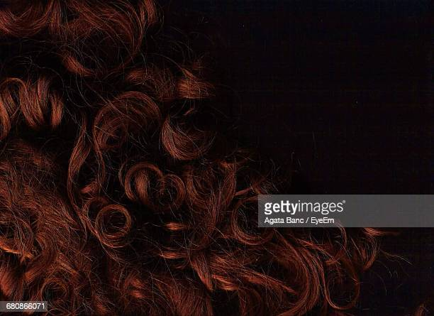 close-up of human hair - curly hair stock pictures, royalty-free photos & images