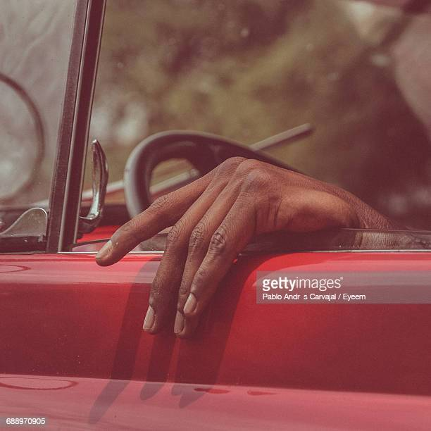 close-up of human hand - carvajal stock photos and pictures