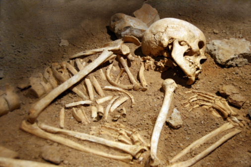 Close-up of human remains in soil 91781076