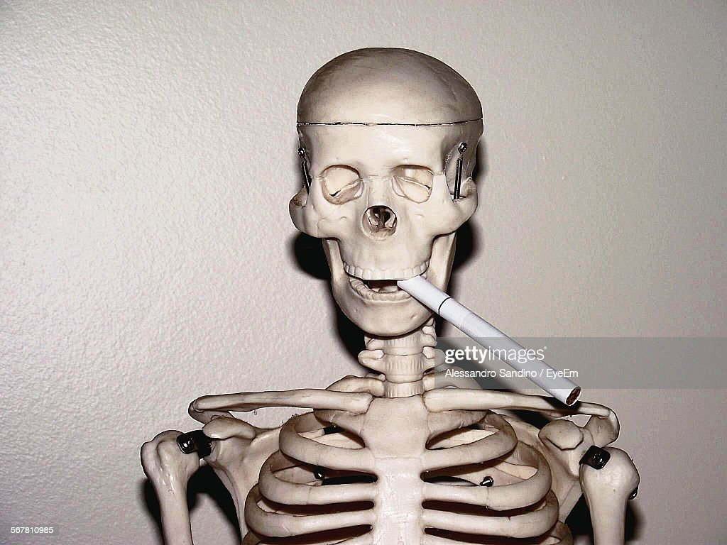 Closeup Of Human Skeleton With Cigarette Against Wall Stock Foto