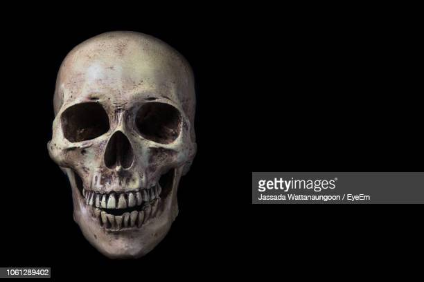 close-up of human skull against black background - human skeleton stock photos and pictures