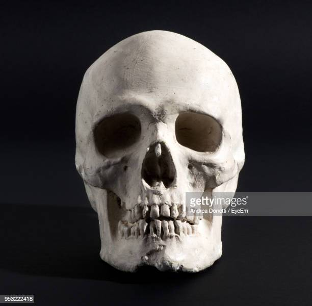 close-up of human skull against black background - skull stock photos and pictures