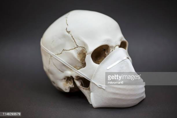 close-up of human skull with protective, pollution face mask - death stock pictures, royalty-free photos & images