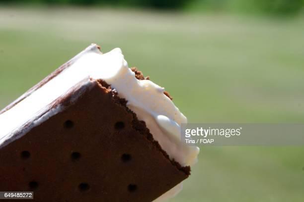 Close-up of ice cream sandwich