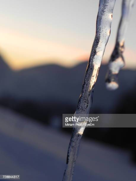 Close-Up Of Icicles In Water During Winter