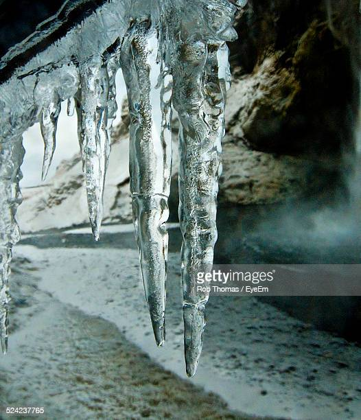 Close -Up of Icicles