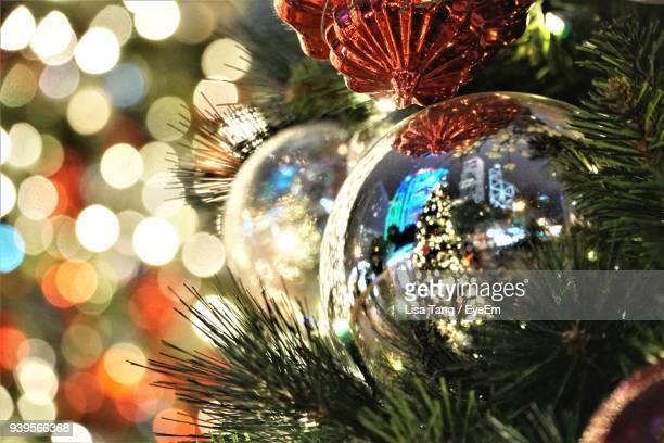 close-up of illuminated christmas tree at night - lisa tang stock photos and pictures