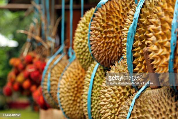 Jackfruit Photos and Premium High Res Pictures - Getty Images