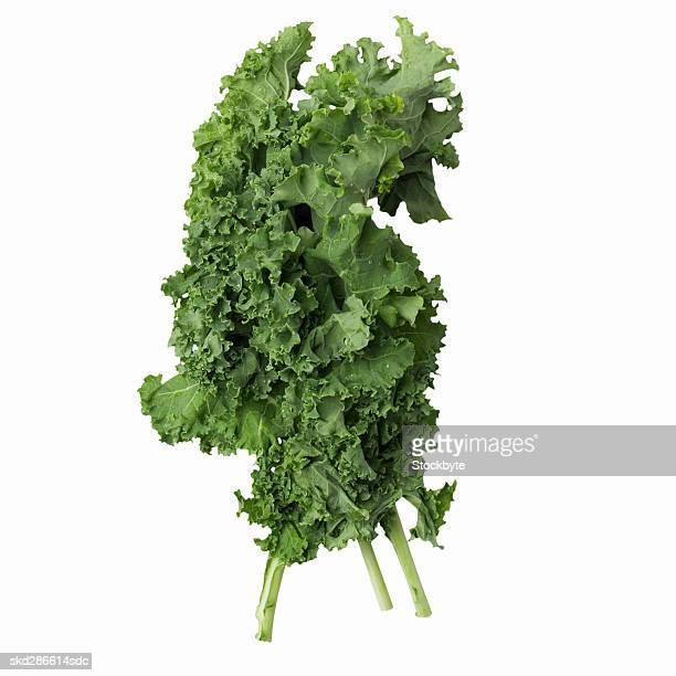Close-up of kale