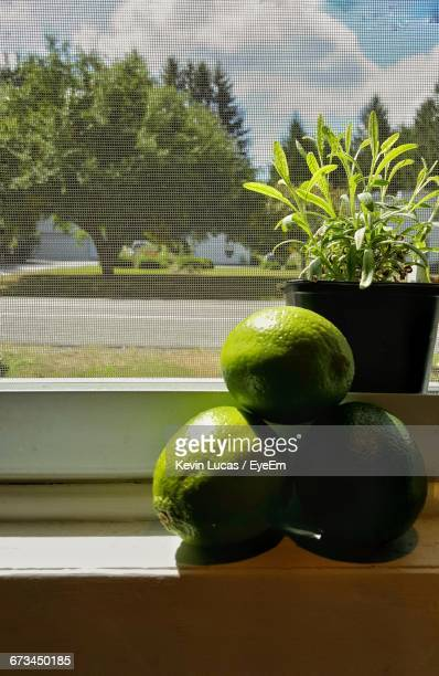 Close-Up Of Key Limes On Window Sill