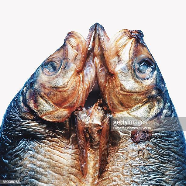 Close-Up Of Kipper Fish Against White Background