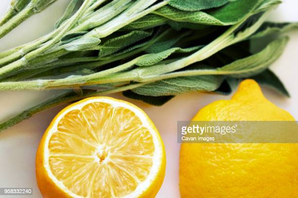 close-up of lemon and leaf vegetables - lemon leaf stock photos and pictures