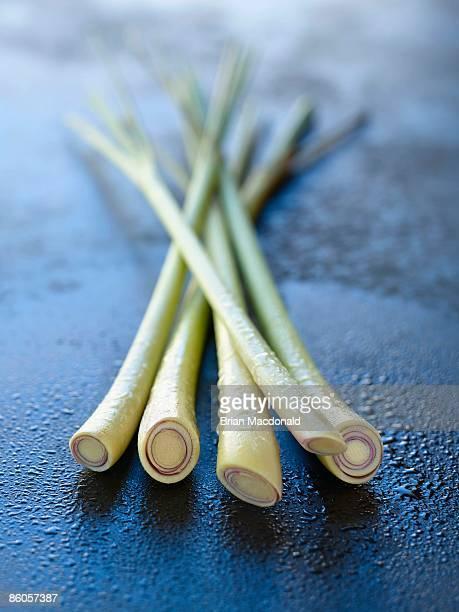 Close-up of lemongrass