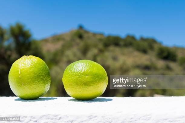 Close-Up Of Lemons On Retaining Wall Against Mountain