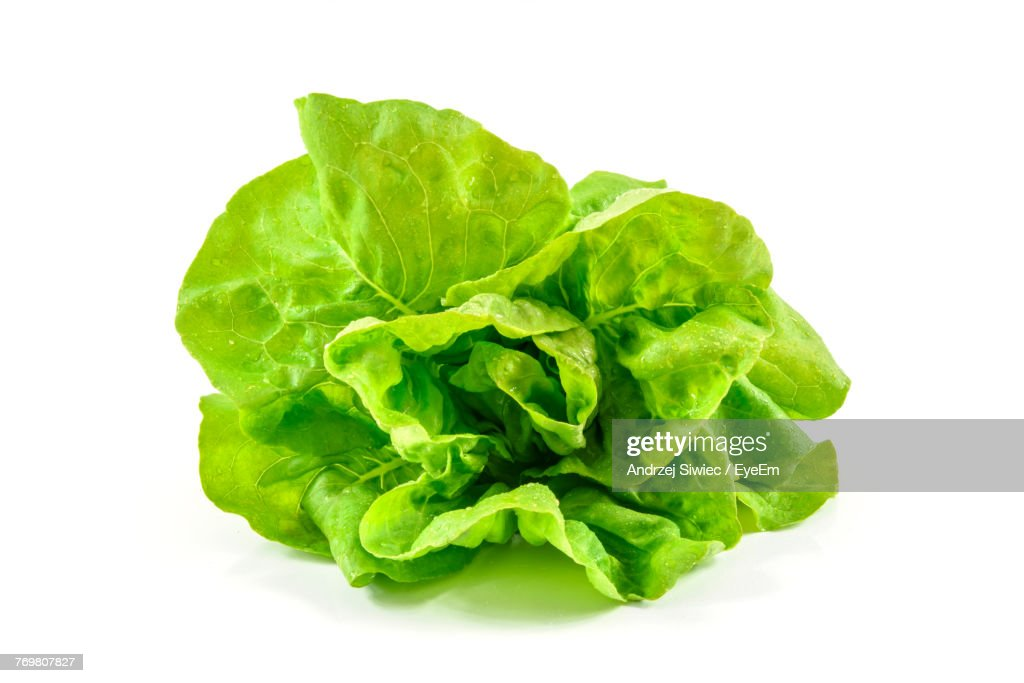 Close-Up Of Lettuce Against White Background : Stock Photo