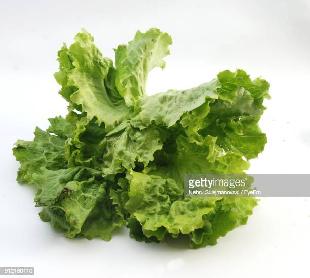 Close-Up Of Lettuce Over White Background