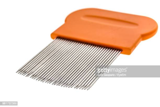 close-up of lice comb over white background - louse stock pictures, royalty-free photos & images