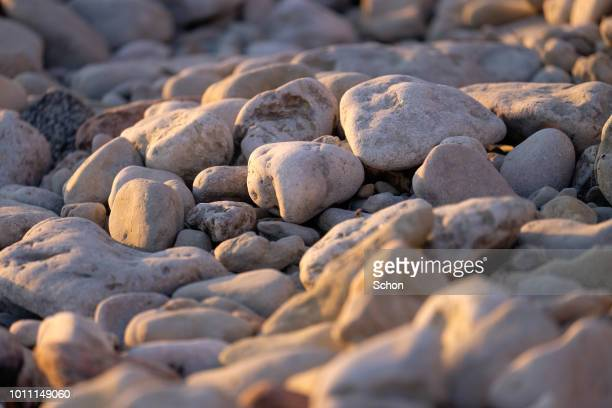 close-up of limestone on a beach in gotland in the evening light in summer - gotland bildbanksfoton och bilder