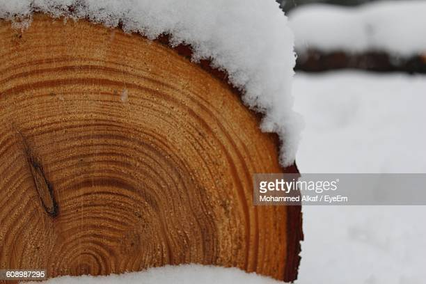 Close-Up Of Log On Snow Covered Field