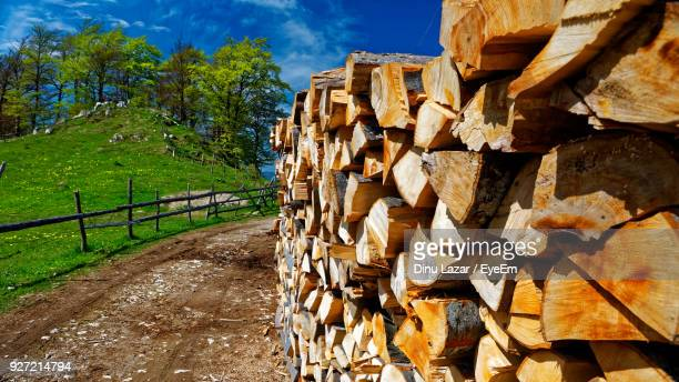 Close-Up Of Logs Against Trees