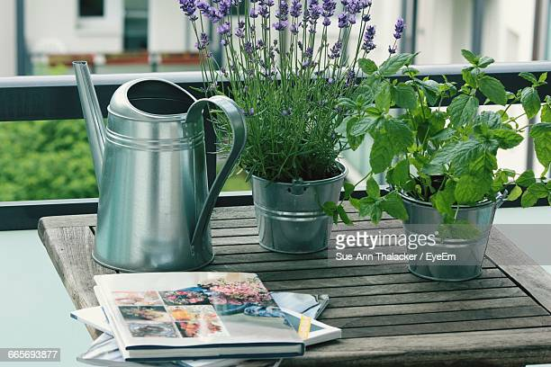 close-up of magazines by watering can by houseplants on table - nature magazine stock pictures, royalty-free photos & images