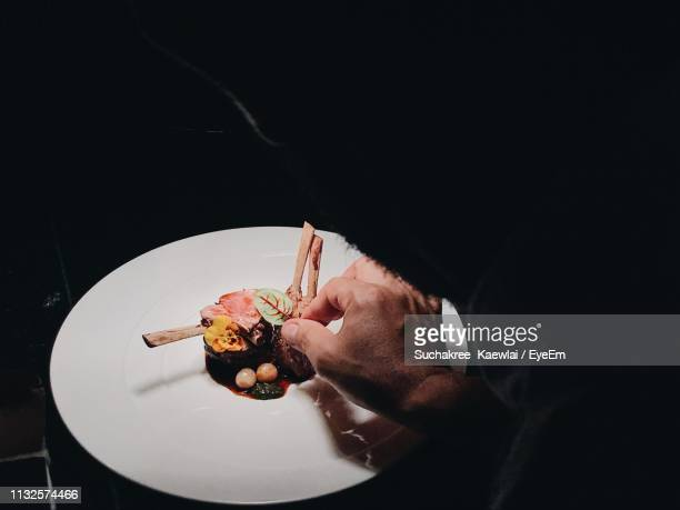 close-up of male chef preparing food in kitchen - garnish stock pictures, royalty-free photos & images