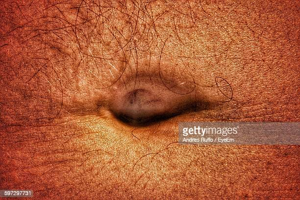 Close-Up Of Man Belly Button