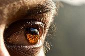 Closeup of man eye