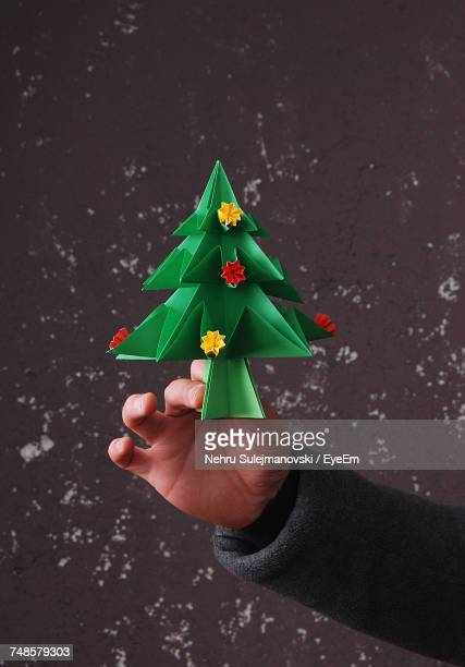 Close-Up Of Man Holding Christmas Tree