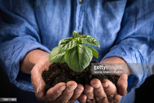 Close-Up Of Man Holding Dirt With Plant