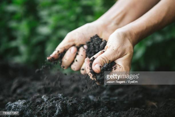 close-up of man holding soil - erdreich stock-fotos und bilder