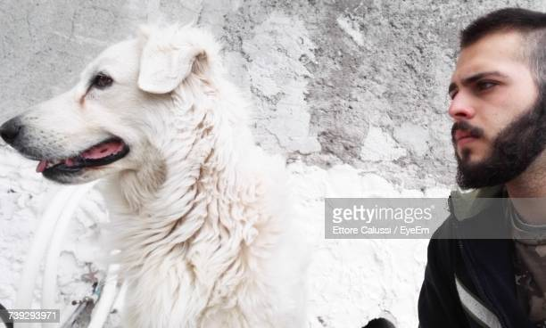 close-up of man looking at dog against textured wall - seeing eye dog stock photos and pictures