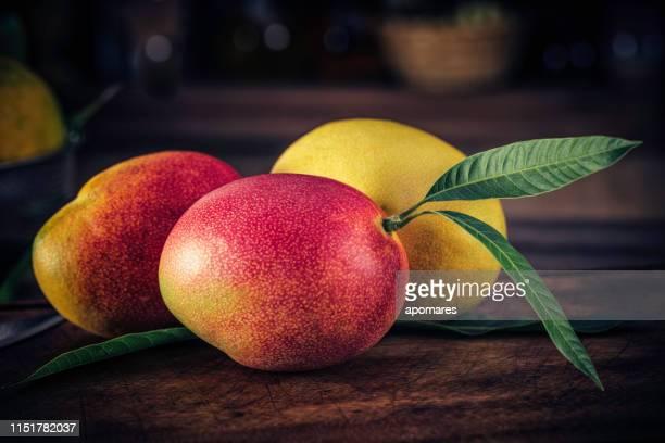 nahaufnahme von mangos in der rustikalen küche. natürliche beleuchtung - mango stock-fotos und bilder