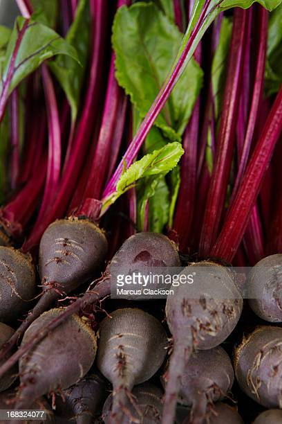 Close-up of many fresh beetroots