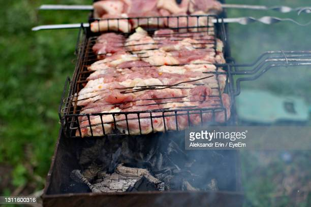 close-up of meat on barbecue grill - ニジニ・ノヴゴロド州 ストックフォトと画像