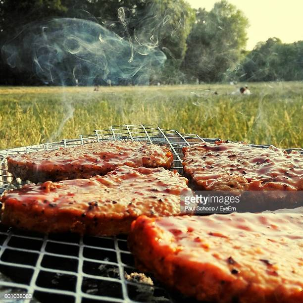 close-up of meat on barbecue metal grate in field - metal grate stock photos and pictures