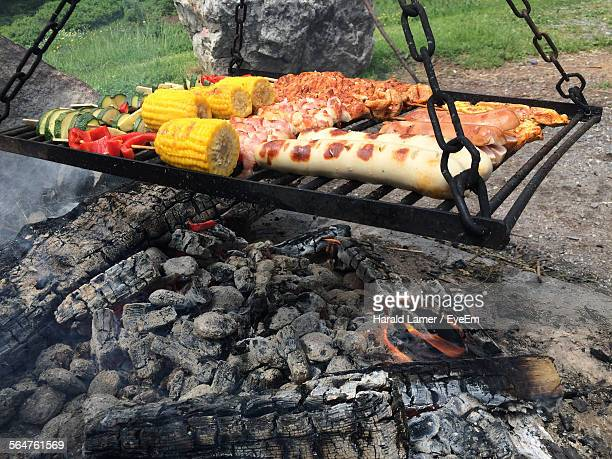 Close-Up Of Meat Slices With Vegetables On Barbecue Grill