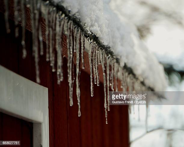 Close-Up Of Melting Icicles On Roof