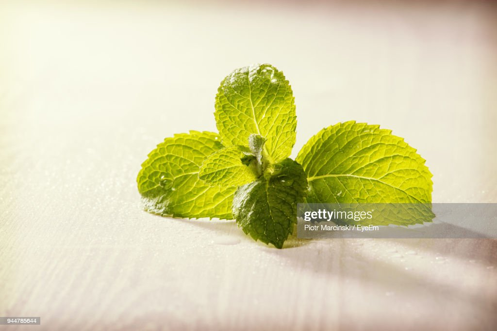 Close-Up Of Mint Leaves On Table : Stock Photo