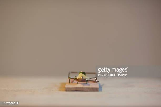 close-up of mousetrap on table against beige background - paulien tabak stock pictures, royalty-free photos & images