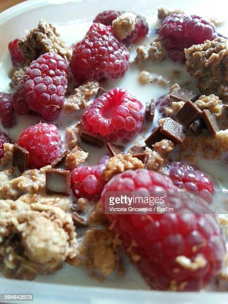 Close-Up Of Muesli Bowl With Raspberries And Chocolate Chips