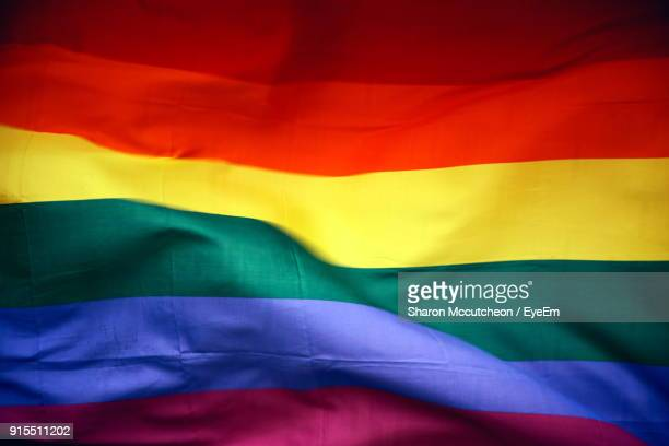 close-up of multi colored flag - pride flag stock pictures, royalty-free photos & images